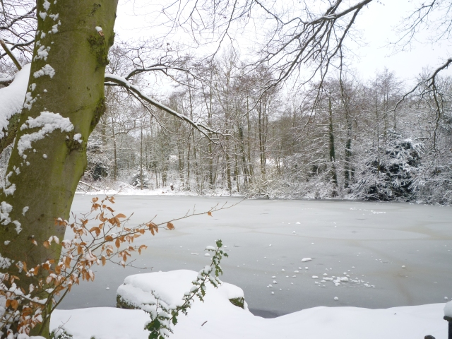 Snowy London - Hampstead Heath7