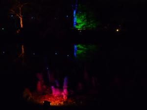 A Walk through an Enchanted Woodland - fire! 3