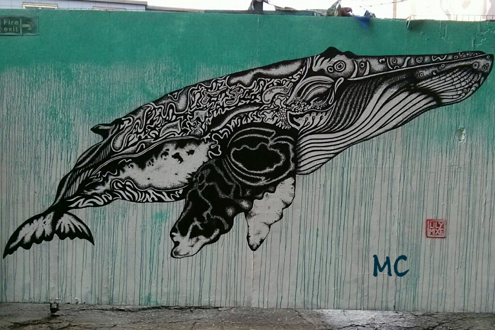 Image of: Drawings Picture Wednesday Cool Sea Animals Londoner From Afar Wordpresscom Picture Wednesday Cool Sea Animals Londoner From Afar